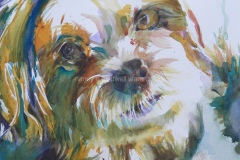 Perry the Dog - Watercolor 11x15