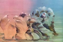 Sea Otter -  Watercolor 15 x 11