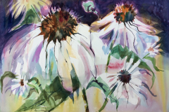 1_Cone-Flowers-2-Watercolor-15x22-1-scaled