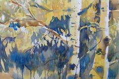 Aspen Grove - Watercolor 15x22