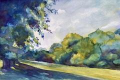 Irish-Meadow