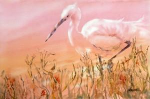 Egret in Pink  2100-01-HLF 1200px