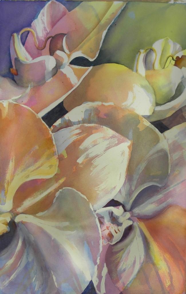 Orchids     9000-24-HLF  1200px