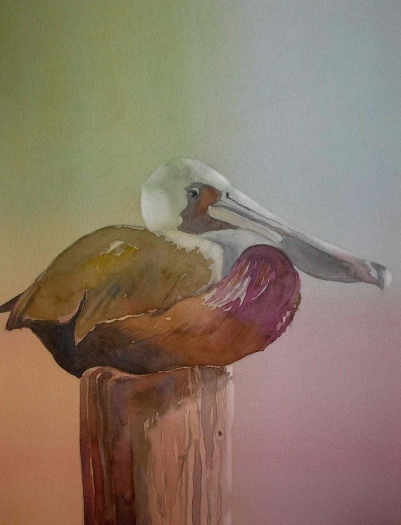 Pelican Perched   9000-11-QTR  1200px