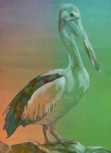 Timm's Pelican     1000-01-HLF  1200px
